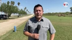 """Gobernadores republicanos proponen medidas ante la """"crisis"""" en la frontera"""