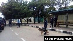 Reacções a repressão de manifestação em Luanda - 2:46