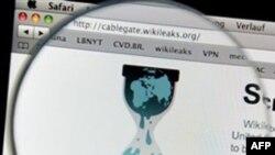 """""""Wikileaks"""" tərəfdarı haker qrupun növbəti hədəfi: """"Paypal"""" və Amazon"""