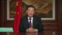 """VOA连线(乔栈):美专家:""""九合一选举""""令中国""""松了口气"""",会继续坚持现有对台政策"""