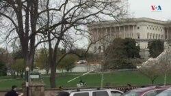 Hombre aterriza girocóptero en Capitolio