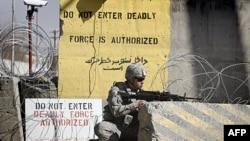 Afganistan'da Bin Ladin'in Yardımcısı Yakalandı