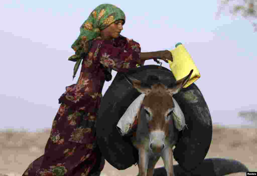 A woman hangs an inner tube of a tire filled with drinking water, over a donkey, next to a well in the Yemeni governorate of Taiz, Apr. 1, 2013.