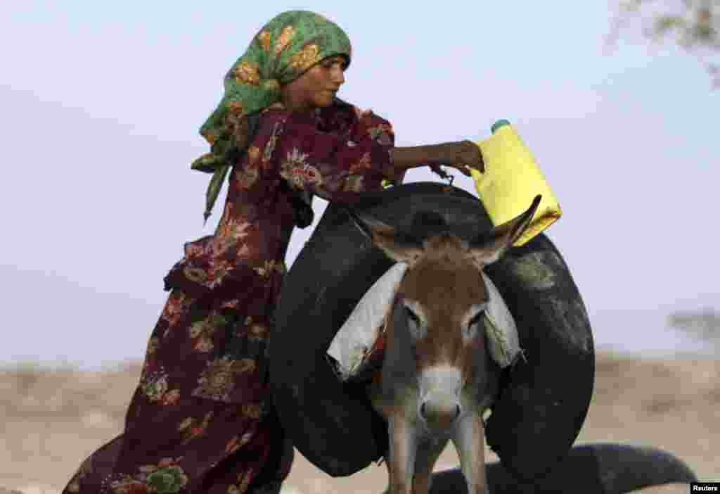 4月1日在也门,一位妇女把灌满了水的轮胎挂在一头驴身上。