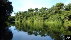 The jungle is reflected in one of the canals of Totuguero National Park, Costa Rica. (file)