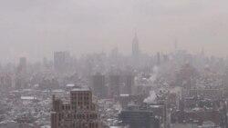 Frio ártico NE EE.UU.