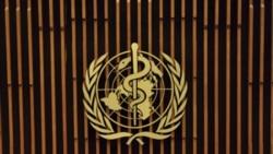 شمار تلفات ناشی از ابتلا به آنفلوانزای خوکی در اروپا افزایش یافت
