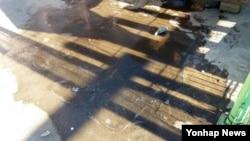 강원 산간 아침 기온이 영하권으로 떨어진 9일 설악산국립공원 중청대피소 부근에서 올가을 첫 얼음이 관측됐다. (설악산사무소 제공)