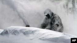 美國遭受暴風雪襲擊