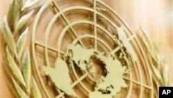 联合国徽标