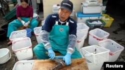 Fishing boat Shikishima-maru captain Yukio Yamamoto, 49, flanked by his mother Yoko, 70, cleans pufferfish near Ohara port in Isumi, east of Tokyo, Japan November 21, 2018. (REUTERS/Issei Kato)