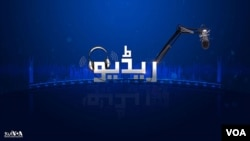 8:00PM ان دا نیوز