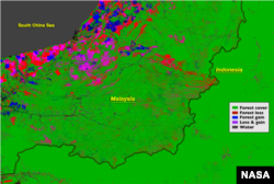 The border between Malaysia and Indonesia stands out in the Landsat-based map of forest disturbance. Red pixels represent forest loss between 2000 and 2012.