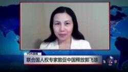 VOA连线张青: 联合国人权专家敦促中国释放郭飞雄