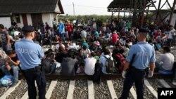 移民在克罗地亚东部与塞尔维亚边界线附近的一个火车站等候火车。(2015年9月17日)