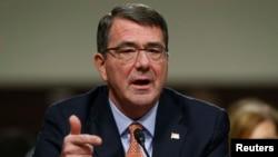 امریکہ کے نئے وزیر دفاع ایشٹن کارٹر (فائل فوٹو)