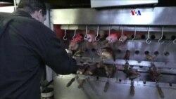 Advertencia de la OMS causa divisiones entre amantes de la carne