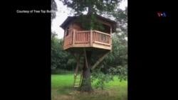 Ağac başında evlər