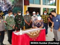 BKSDA Sumbar menandatangani piagam kesepakatan bersama para pihak untuk kelestarian harimau Sumatera di Kabupaten Pasaman Barat. Kesepakatan itu bertepatan dengan perayaan Global Tiger Day 2021, Kamis 29 Juli 2021. (Courtesy: BKSDA Sumbar)