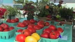美国专讯:1)社区协助低收入家庭找出健康饮食新选择 2)教学新招:吃家庭作业