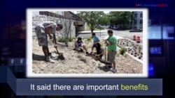 News Words: Benefits