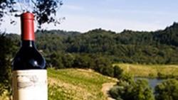 گزارش: شراب سازی ها در آلبانی گسترش می يابند