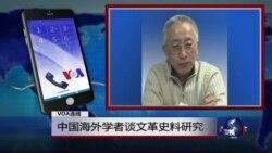 VOA连线高伐林: 中国海外学者谈文革史料研究