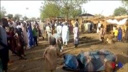 Au moins cinq morts dans un raid de Boko Haram au Nigéria (vidéo)