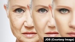 دانشمندان موادی را که خاصیت ضد پیری دارد، شناسایی کرده اند