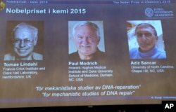 A view of the screen showing the winners of the 2015 Nobel Prize for Chemistry, during a press conference, in Stockholm, Oct. 7, 2015.