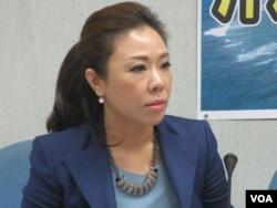 國民黨立法院黨團副書記長李彥秀(美國之音張永泰拍攝)