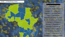 Quels sont les effets du coronavirus sur l'économie mondiale et en Afrique?