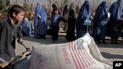 در این گزارش گفته شده است که بیش از یک میلیون افغان به دلیل عوامل مختلف از منازل شان بیجا شده اند.