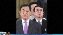 薄熙来被免职-(1)北京记者张楠连线报道