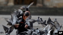 A man wearing a protective face mask feeds a flock of pigeons at Bolivar Square in Bogota, Colombia, Tuesday, July 21, 2020, amid the new coronavirus pandemic.