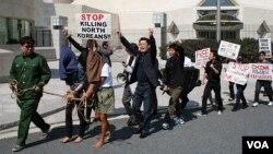 북한의 인권유린을 규탄하는 미국 워싱턴의 시위대. (자료사진)