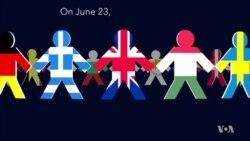 Britain EU refendum