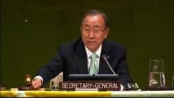 UN Climate Summit Raises Hopes for Climate Treaty