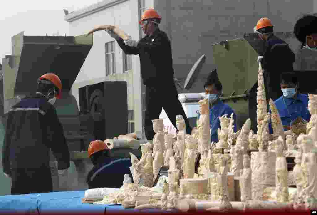 Китай - найбільший у світі ринок збуту слонової кістки. У січні китайський уряд організував показове знищення 6 тон слонової кістки.