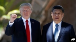 Donald Trump et Xi Jinping, Mar-a-Lago, le 7 avril 2017, Palm Beach, Floride, USA. (AP Photo/Alex Brandon)