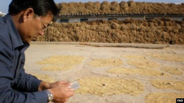 작황과 식량안보 조사를 위해 북한에 파견된 유엔 식량농업기구 실사단. (자료사진)
