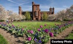 """美国史密森博物院号称""""城堡""""的建筑及其花园。楼房中有威尔逊国际学者中心,其中有基辛格中美研究所(史密森博物院图片)"""
