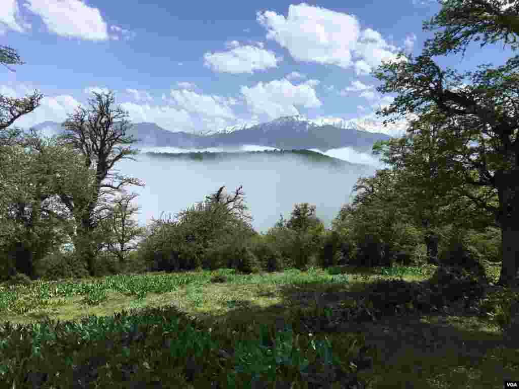 دشت و مه – مازیچال کلاردشت در مازندران عکس: مهدی ایوبی (ارسالی از شما)