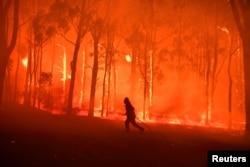 Požar u šumi jugozapadno od Sidneja (Foto: Reuters/Dean Lewins-AAP)