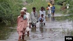 Warga Pakistan di provinsi Sindh harus mengungsi akibat banjir (15/9).