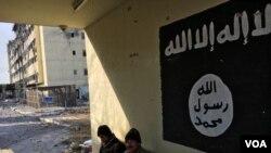 داعش په عمده توگه په عراق او سوریه کې او تر یوه حده په افغانستان کې فعال دی