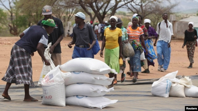 FILE - Zimbabweans collect food aid from a distribution point in Mutawatawa, about 220km northeast of the capital Harare, November 25, 2013.