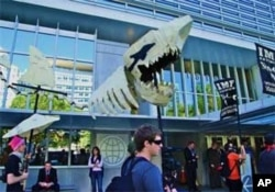 "Demonstrators compared the IMF to a ""loan shark"" and urged an end to what they called unjust economic policies"