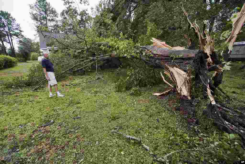 Resident Don Hurtig looks over an oak tree that blew over in his front yard as Hurricane Irene comes ashore near Morehead City, North Carolina. (Reuters Image)