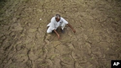 Người nông dân này đang ngồi trên một cánh đồng bị khô hạn, nứt nẻ ở Jammu, Ấn Độ, thứ Sáu 03/08/2012